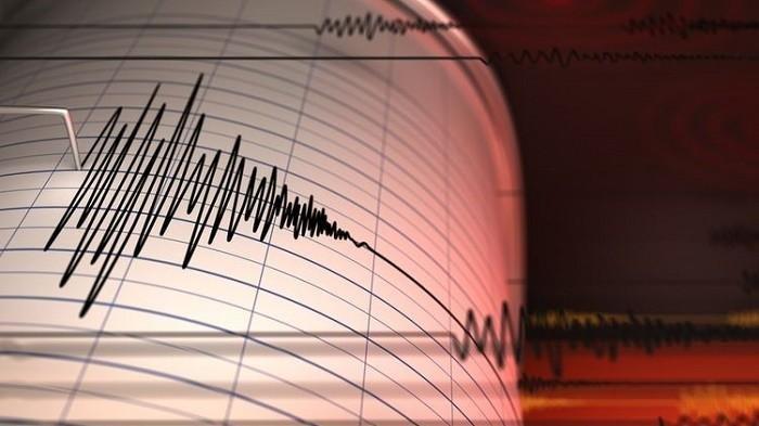 BREAKING NEWS: Gempa Magnitudo 4,4 Guncang Maluku Barat Daya